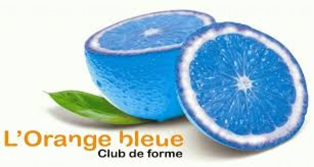 INSTALLE PAR MURS ET FONDS.COM - L'ORANGE BLEUE DINARD